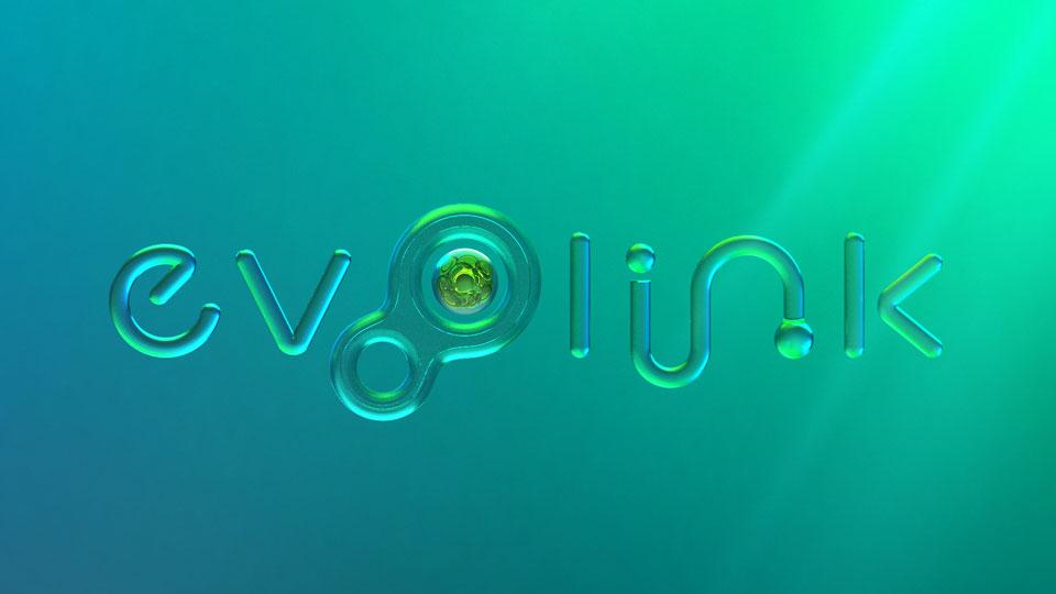 evolink-02-4